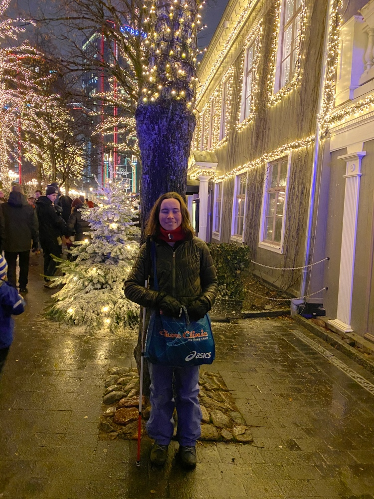 I'm standing in front of a tree with christmas lights on it, and a similarly adorned building is to my right. There are people, and more trees, in the background.